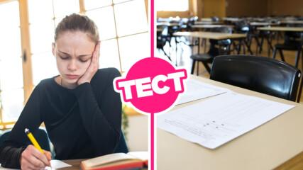 ТЕСТ: Можеш ли да се справиш с това входно ниво за 5 клас?