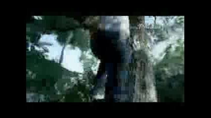 Реклама - Levi`s