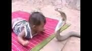 УЖАСЯВАЩО! Змия Хапе Бебе!?