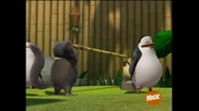 The Penguins of Madagascar - Happy King Julien day