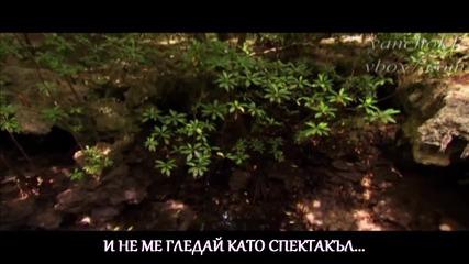Гръцка балада 2014 | Завесата падна | Dimos Anastasiadis - I aulaia ekleise