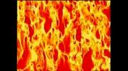Знамения за апокалипсиса Косовете в Арканзас измират с хиляди...