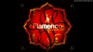 Flamenco-new Grooves - Andalusi Mood