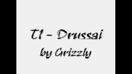 T1 - Drussai