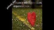 [ Music: Ballads ] Със Сълзи и Рани Давам Старт на Любовта Ми Студена ... :)