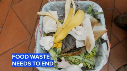 Wasting food isn't only unnecessary, it's also expensive