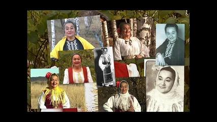 Анастасия Костова - Димитър стадо пасеше