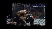 Mma Best Knockout ever!!!
