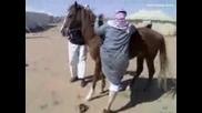 Смях - Конят Не Издържа...
