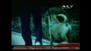 Константин - Кой Живее В Гаража