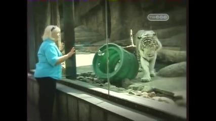 Московския зоопарк - животни целители