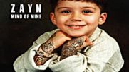 Zayn - Rear View ( Audio )