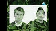 Трябва ли човек да влиза в затвора за една цигара марихуана - Часът на Милен Цветков