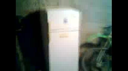 xladilnika