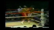 Earnie Shavers - Highlights