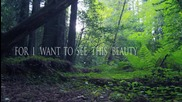 Alunah - Awakening The Forest Official Lyric Video
