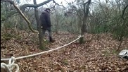 Куче акробат балансира на въже