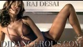 Best Electro House Music 2010 2011