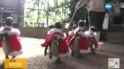 Пингвини, облечени като Дядо Коледа