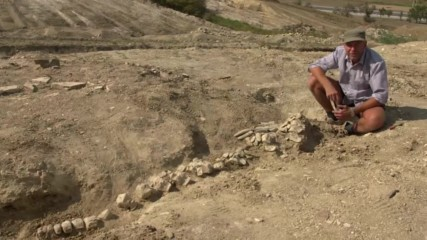 Руснаци откриха скелет от кит на 10 милиона години