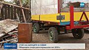 БЕЗ КАРУЦИ В СОФИЯ: Общината спира регистрациите от Нова година