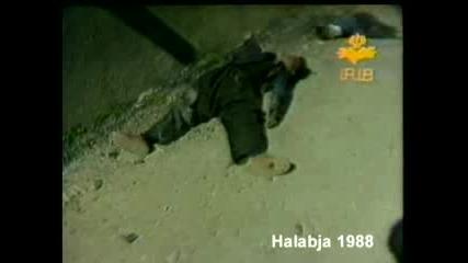Али Химика осъден на смърт
