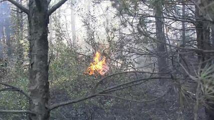 Отново пламна пожарът над Разлог