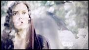 Никой не може да те нарани . Damon & Elena    The Vampire Diaries ..