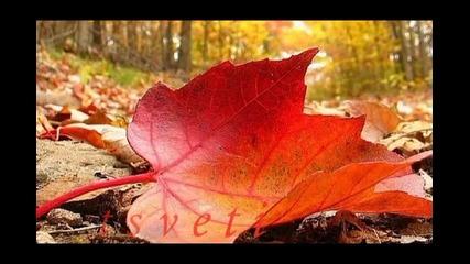 Нашата Есен
