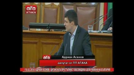Адриан Асенов- Циганската престъпност обезлюдява цели райони на България. Тв Alfa- Атака 10.02.2014г