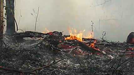 Russia: Firefighters blast soil to stop Yakutia wildfires