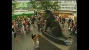 Статуята На Вечно Чакащият Хачико