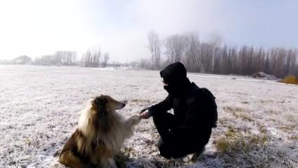 Да намериш най-добрият ти приятел!