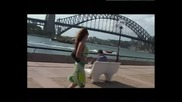 Глория В Австралия [dvd Rip]