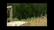 Downhill - Sam Blenkinsop - Yeti & Fox Racing