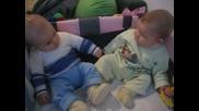 Бебета В Кошара