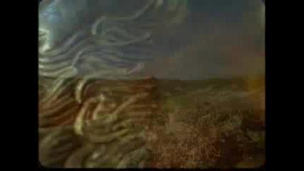 България - Раят на земята !!!    /Вероника - Майчице България/