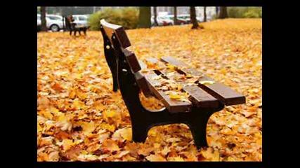 Есента на мама - Тони Димитрова