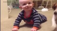Джак Ръсел учи бебе да пълзи
