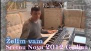 mix pjesama - od Branislava