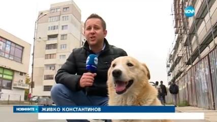 Кой е най-големият гратисчия в София?