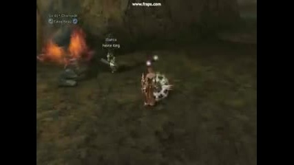 Lineage Ii - 35 Classes [2 2]