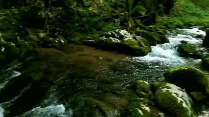 Река Младежка