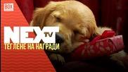 NEXTTV 022: Теглене на награди