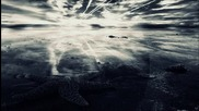 Oz Alchemist - Starfish In Slow Motion