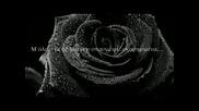 Ева Мили - Черна роза (с превод)