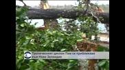 Тропическият циклон Пам се приближава към Нова Зеландия