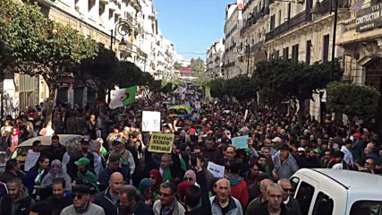 Algeria: First anniversary of anti-govt. protest movement marked by clashes