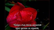 Axel Rudi Pell - In The Air Tonight (превод)