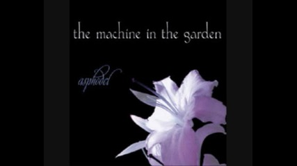The Machine in the Garden - Photographic